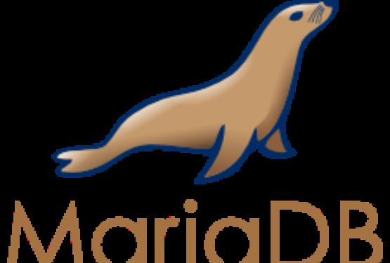 Connettere MariaDB e Python su Raspberry Pi